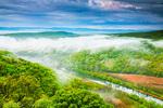 Утринна мъгла над Ропотамо