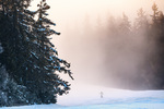 Завеса от мъгла