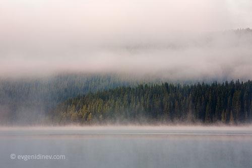 Езерото на мъглата - Page 6 IMG_9257d