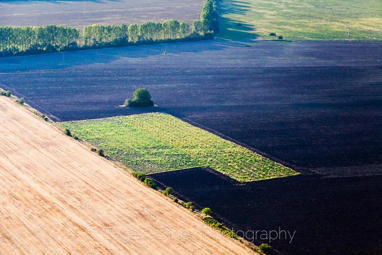 Черно поле