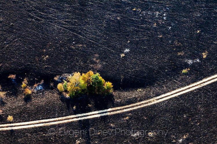 Път в изгоряла нива