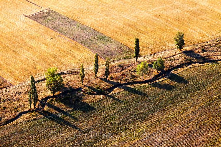 Дървета, поток и път