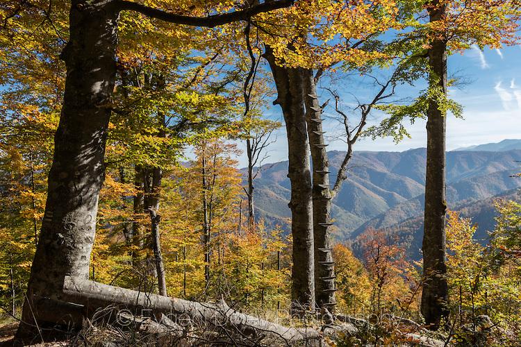 Слънчева есен в балкана