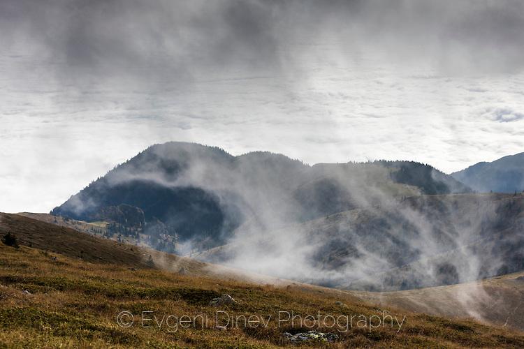 Инвазия на мъглата