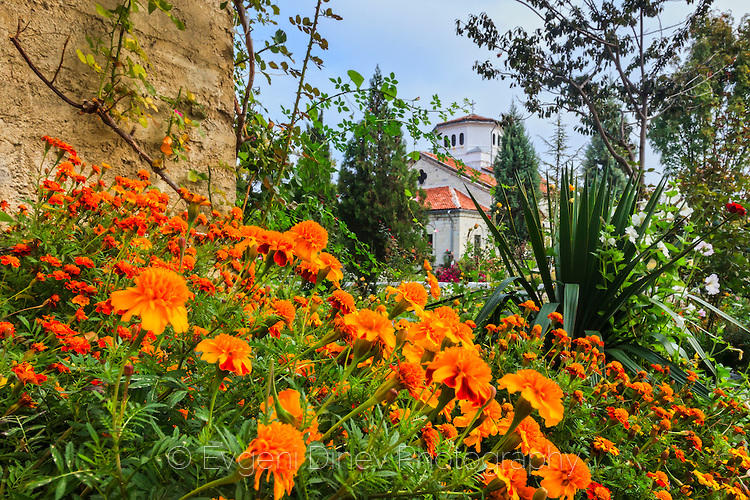 Оранжеви цветя в Араповския манастир