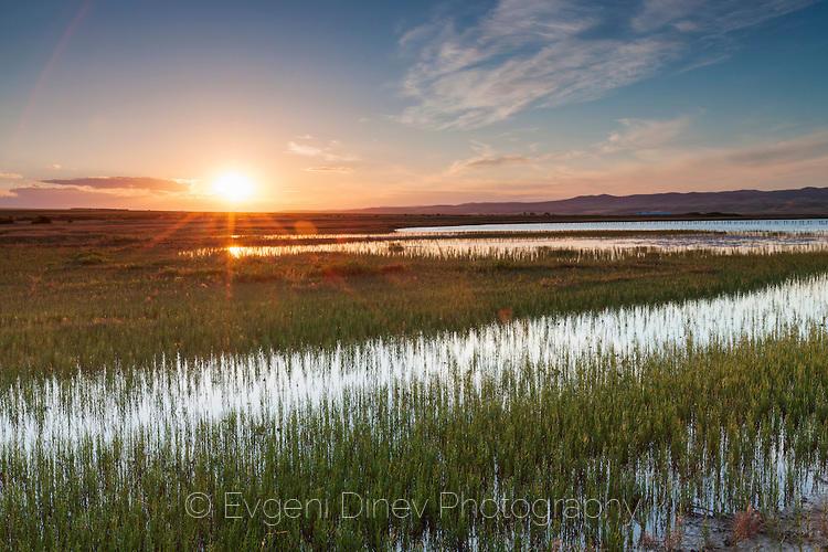 Атанасовското езеро напролет