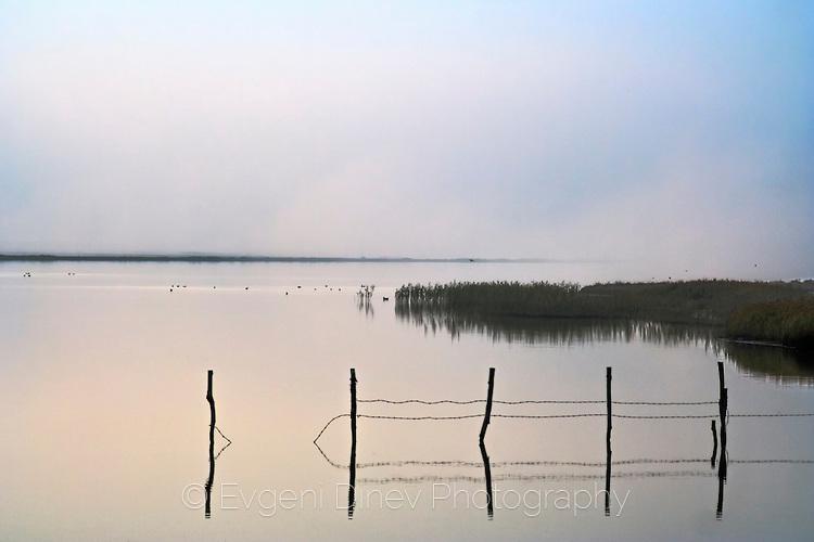 Мъгла на езерото