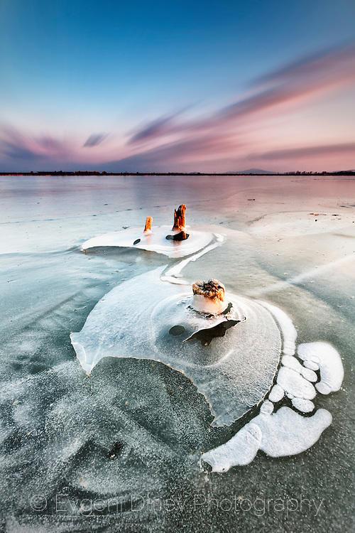 Ледени перки