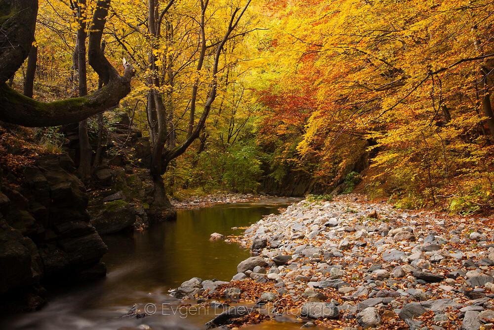 Есен на стара река
