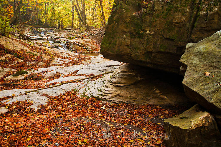 Каменни форми на река Мечи дол