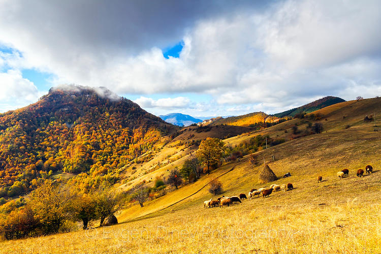Околностите на село Бабинци през есента