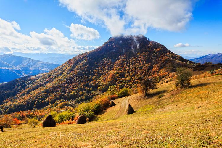 Околията на село Бабинци през есента