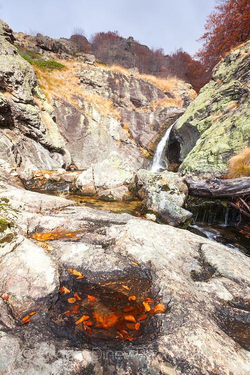 Бабска река