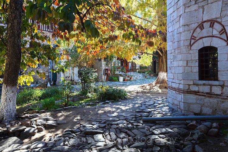 Сред есенната палитра на Бачковски манастир