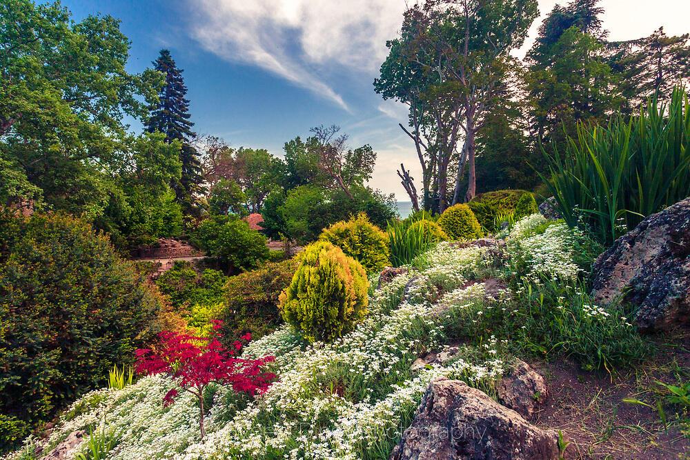 Цветна пролетна градина