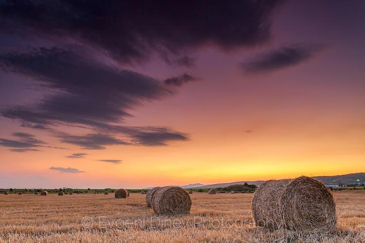Пейзаж с бали сено