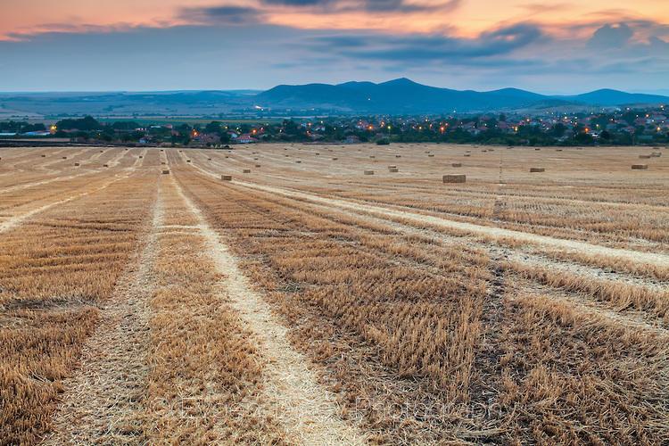 Следи в житно поле