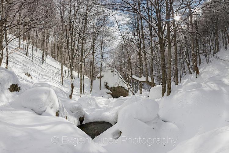 Речен вир в снежна гора