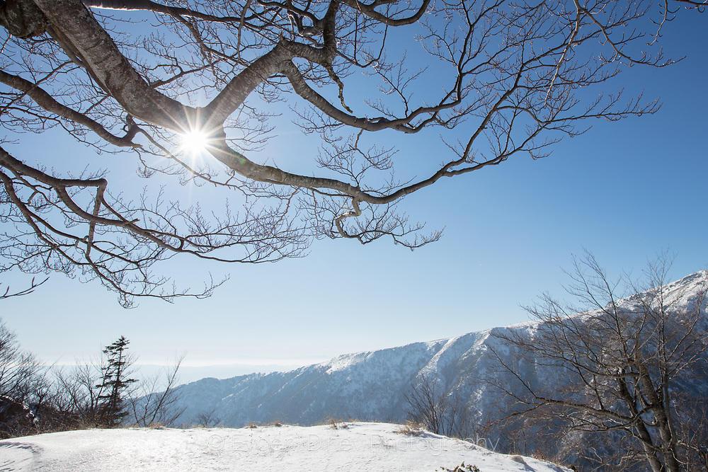 Резерват Соколна през зимата