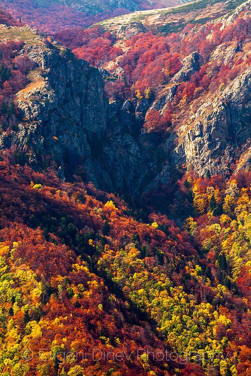 Есенна гледка в Балкана