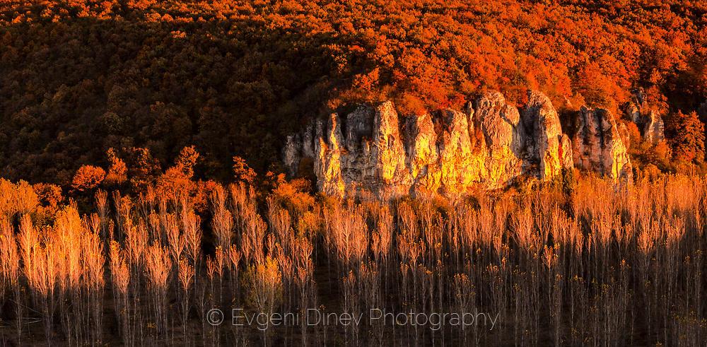 Тополова гора край река Вит огряна в цветовете на залеза