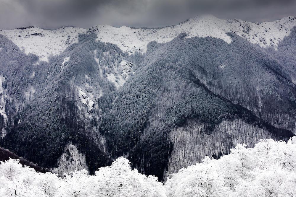 Мрачна планина
