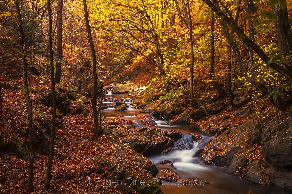 Старопланинска есен