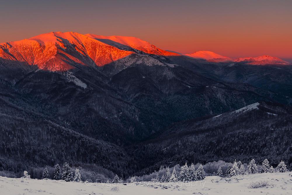 Огрян в алено планински връх по изгрев