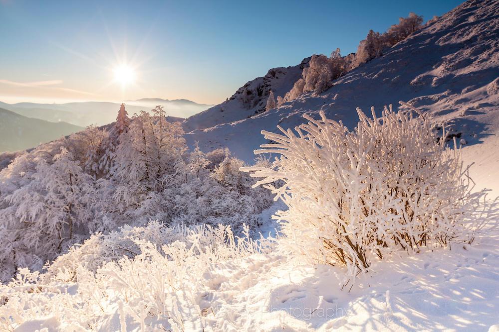 Стара Планина в бяло
