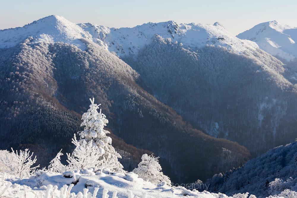 Поглед към хижа Козя Стена в снежния балкан