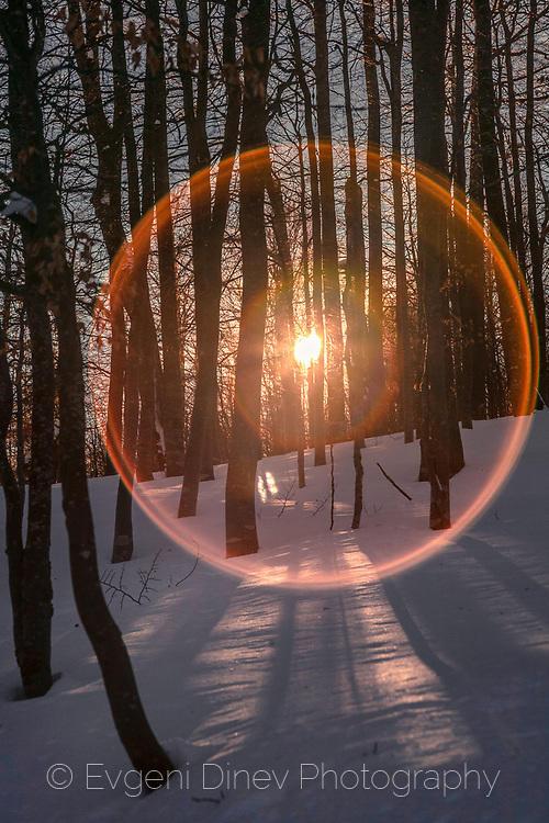Слънчево око