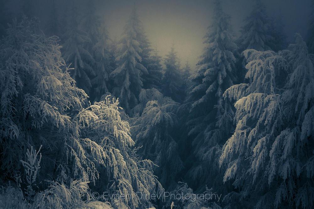Тежък сняг