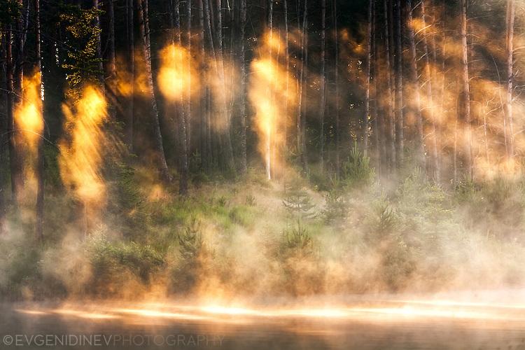 Огнени лъчи