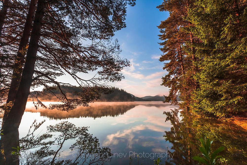 Прекрасен летен пейзаж край езеро