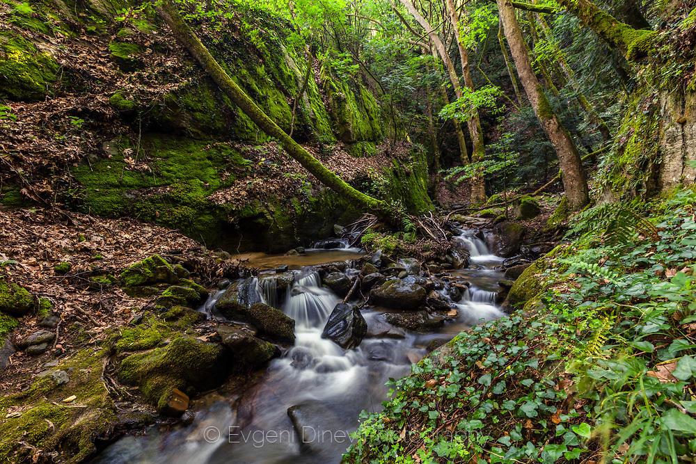 Река Камешница в Беласица
