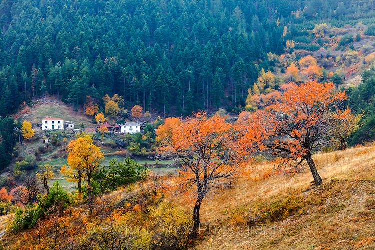 Село Три Могили