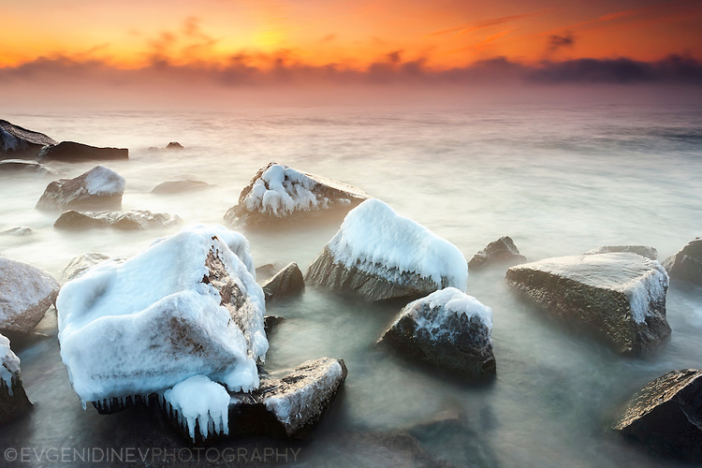 Студено море