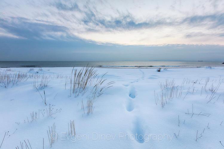 Стъпки в снега на плажа