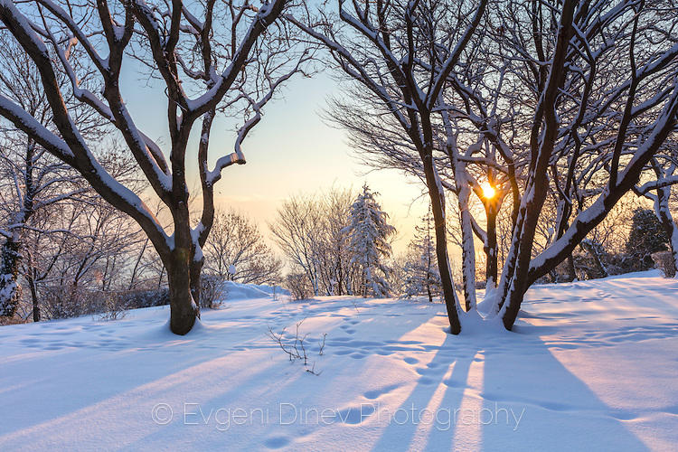 Снежен изгрев в Бургас