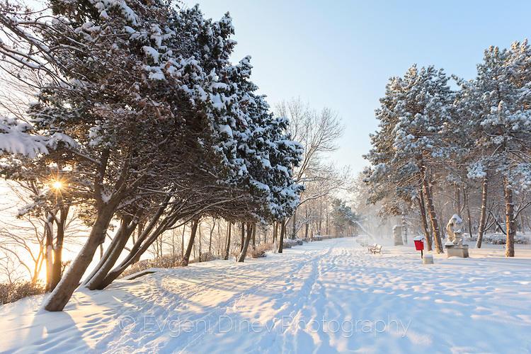 Снежна морска алея в Бургас