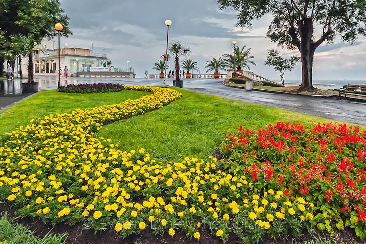 Градски цветчета