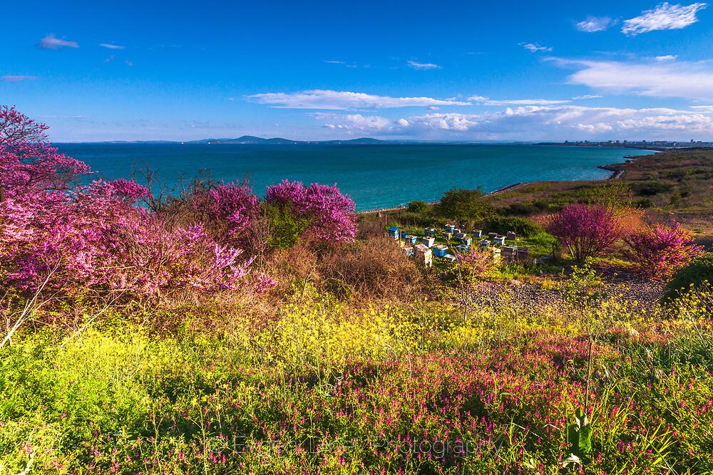 Пролетно крайбрежие