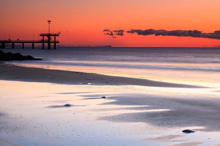 Мъртви медузи изхвърлени на брега