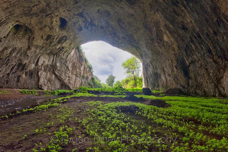 Входа на Деветашка пещера