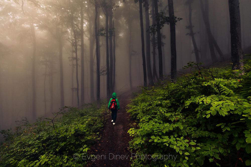 Малко момче в мрачната гора