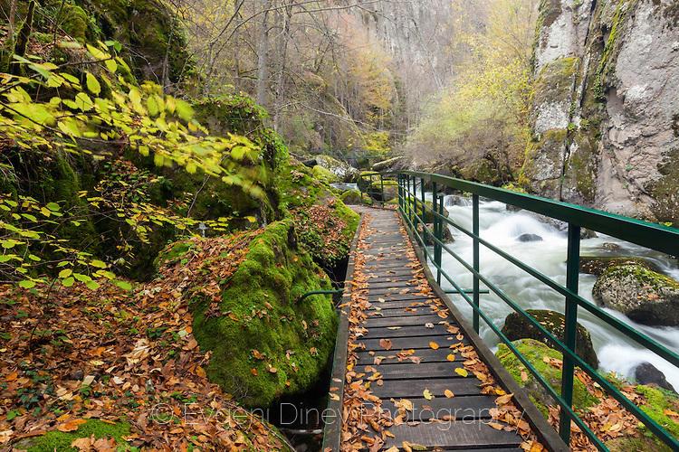 Мостче в ждрелото на Девинска река
