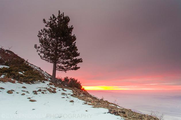 Зимен пейзаж над Сопот