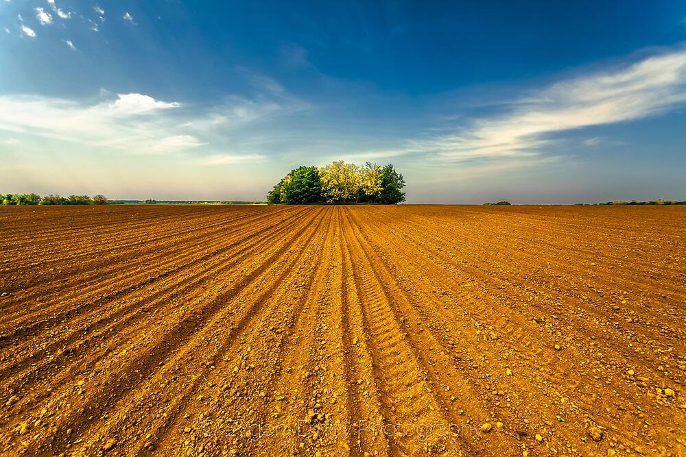 Мини гора, в средата на поле