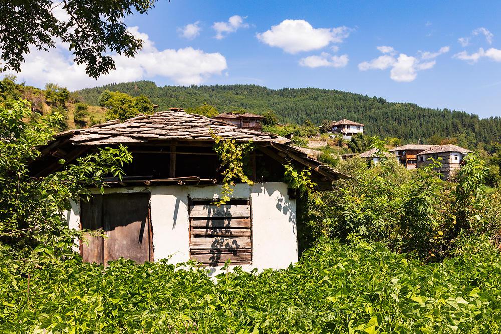 Къща погълната от зеленина
