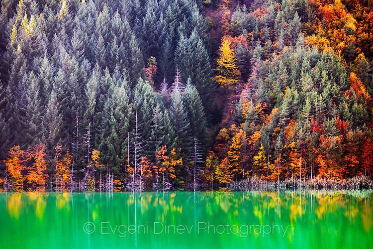 Езеро със зелен цвят